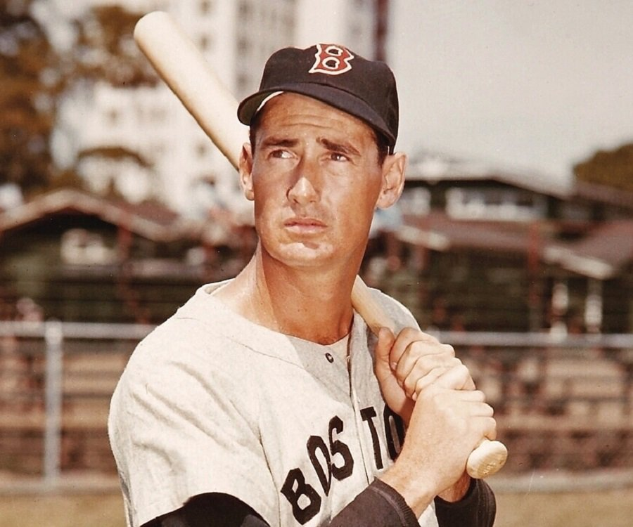 Image result for ted williams